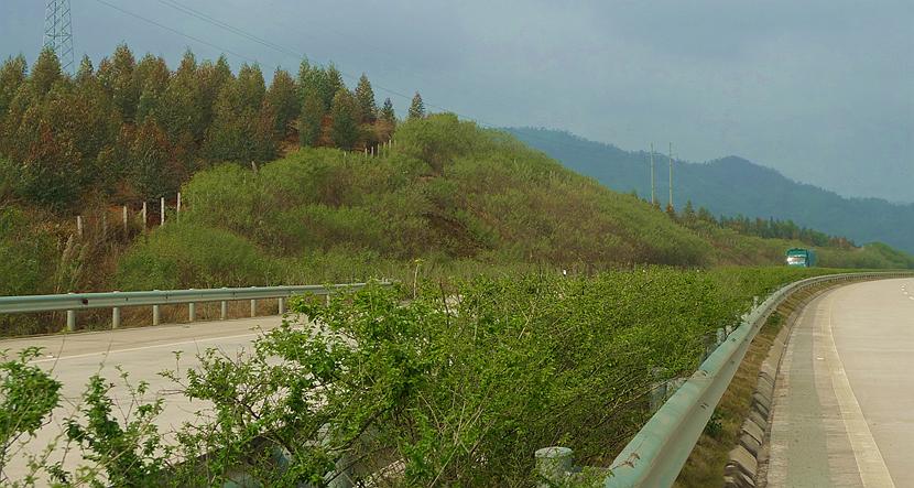 """28公里的天汕高速梅州西环段开通后的又一条""""黄金大道""""."""