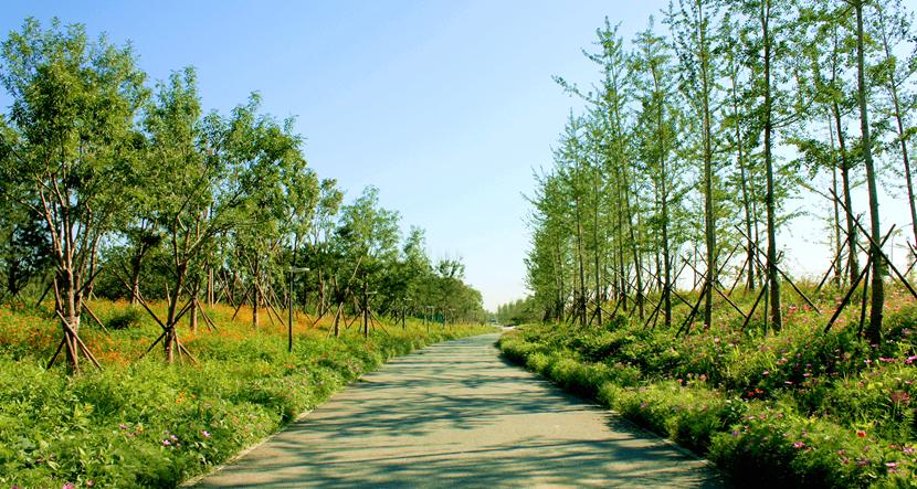北京通州大运河公园 大众七八万的车图片 北宋初期地图高清图片