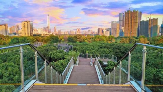生態景觀代表作深圳香蜜公園圖片
