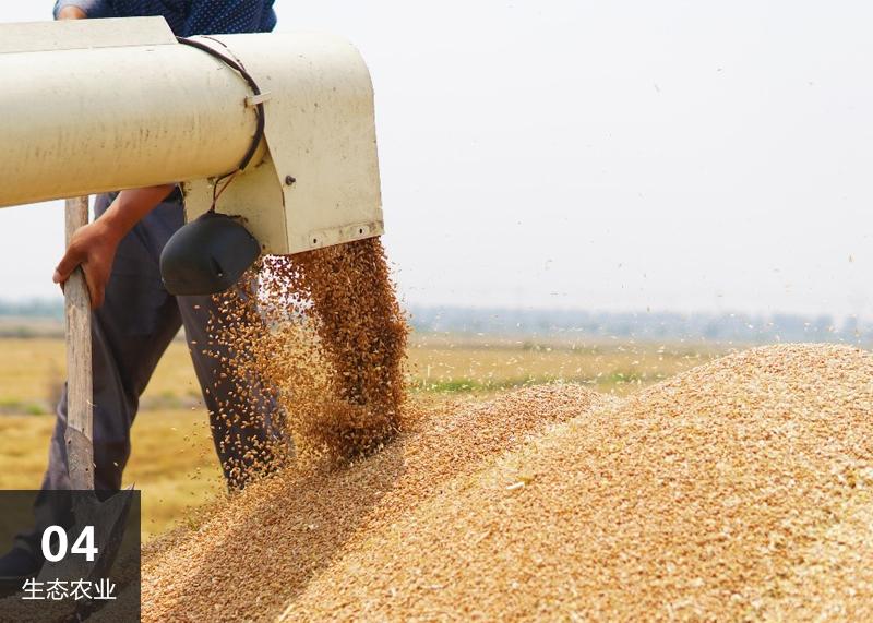 竞技宝黑钱吗农业代表图片